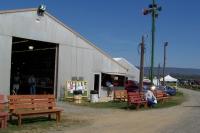 Tractorshow09 019